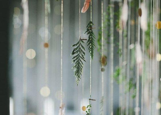 3. Le végétal s'invite à nos fenêtres !